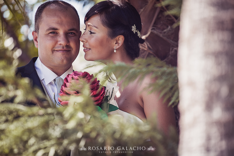 FOTOGRAFO DE BODAS MALAGA -56